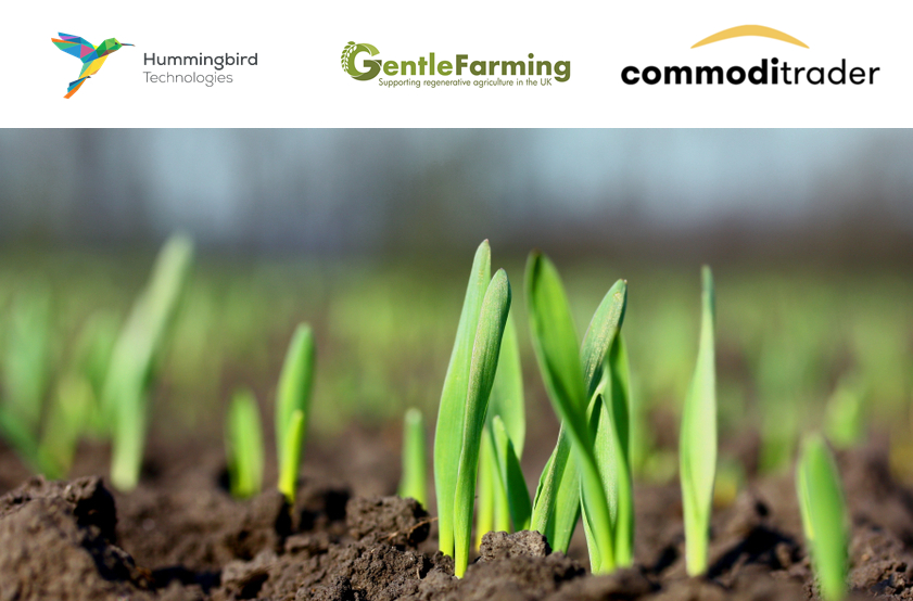 Our new carbon programme partnership with Commoditrader